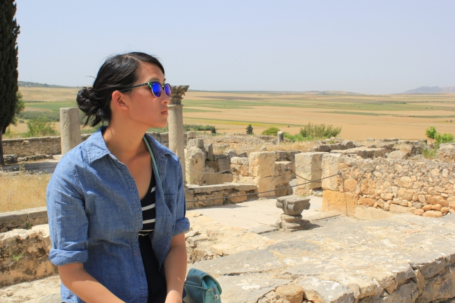 At Volubilis: ancient Roman ruins near Moulay Idriss, Morocco.
